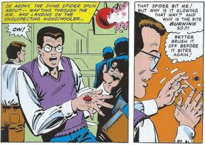 Spiderman comic panels